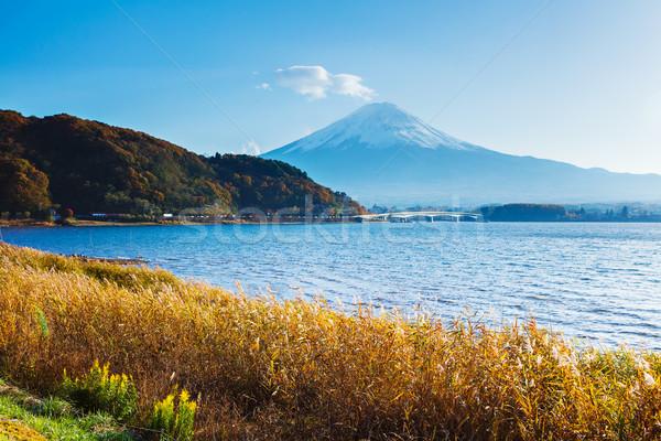 Mt. Fuji with lake in autumn Stock photo © leungchopan