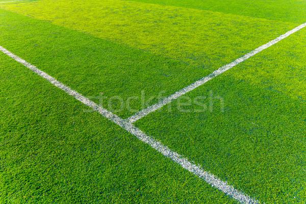 Zöld tőzeg sport aréna textúra fű Stock fotó © leungchopan