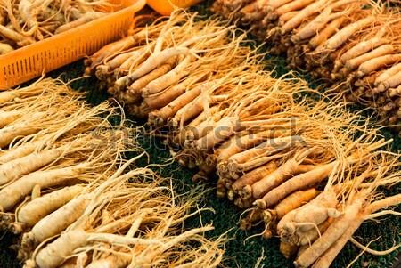 Ginseng root bâton alimentaire médecine marché Photo stock © leungchopan