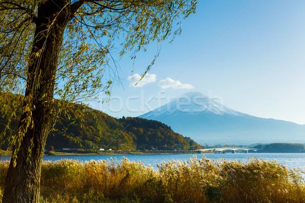 Mt. Fuji and lake Stock photo © leungchopan