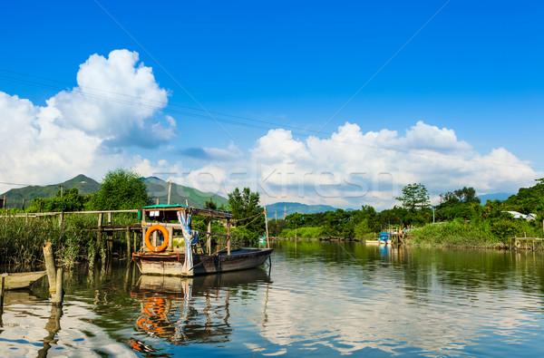 Wetland and sunshine Stock photo © leungchopan
