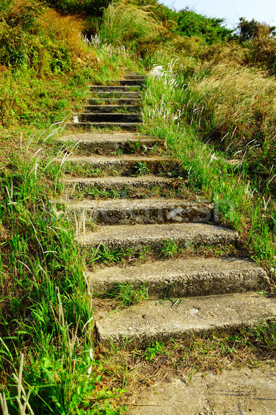 Stok fotoğraf: Basamak · açık · yol · doğa · bahçe · taş