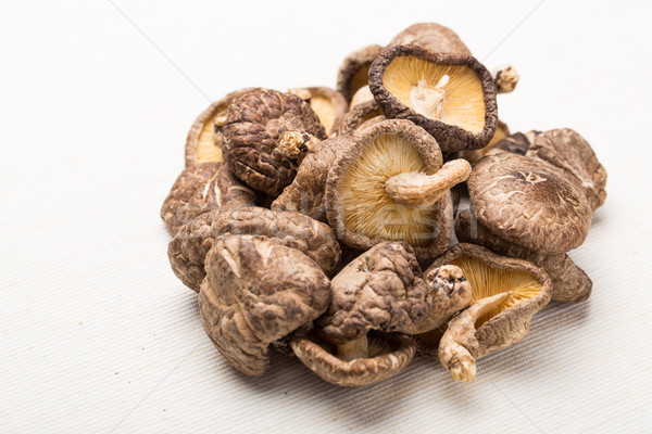 Dried mushrooms isolated on white Stock photo © leungchopan