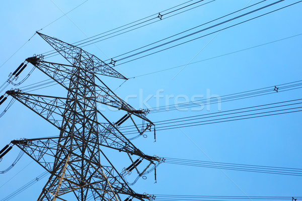 Powerline under blue sky Stock photo © leungchopan