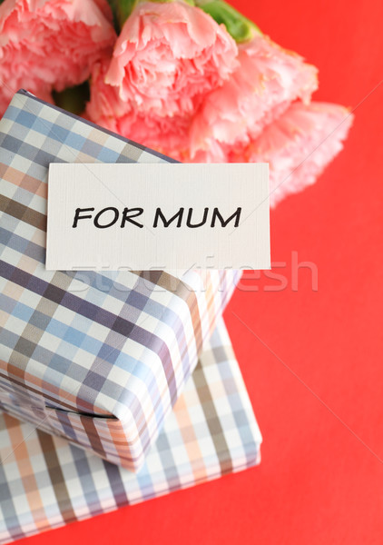 Mothers day with gift and carnation Stock photo © leungchopan