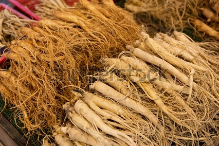Vers ginseng voedsel Rood markt container Stockfoto © leungchopan
