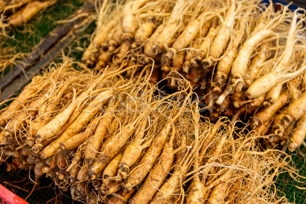 свежие женьшень продовольствие рынке медицина китайский Сток-фото © leungchopan