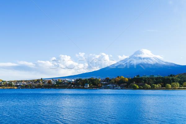 Fuji lago árvore neve montanha planta Foto stock © leungchopan