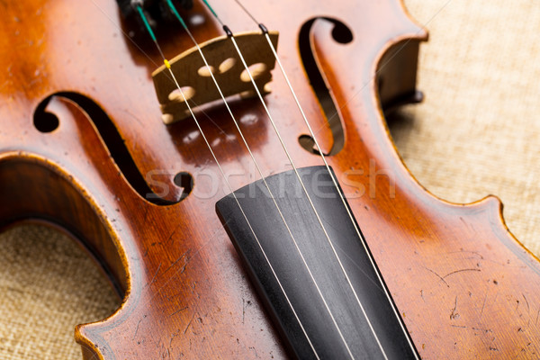 Western musical instrument, violin Stock photo © leungchopan