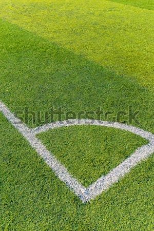 Futballpálya textúra fű sport természet futball Stock fotó © leungchopan