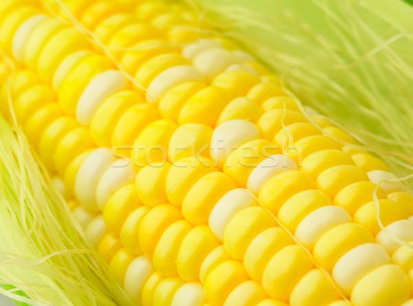 corn cob Stock photo © leungchopan