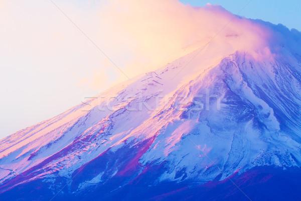 Fuji paisaje montana planta japonés Foto stock © leungchopan