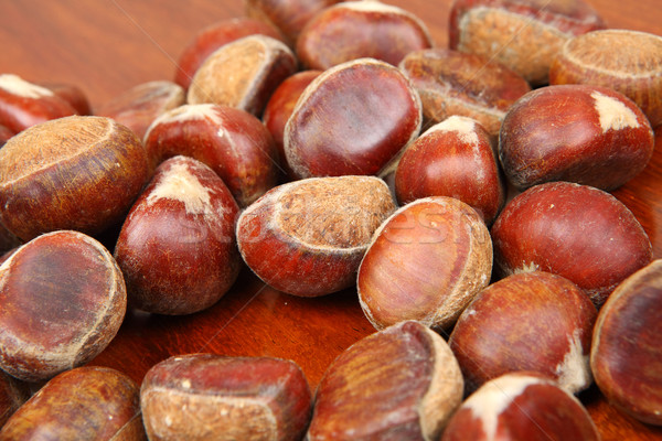 chestnut Stock photo © leungchopan