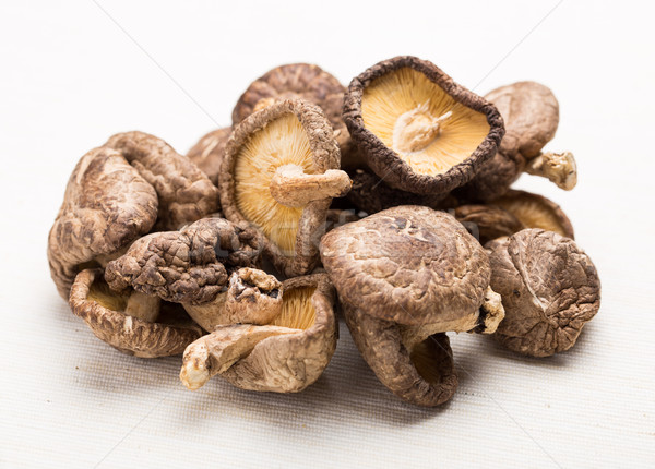 Heap of the dried mushroom Stock photo © leungchopan