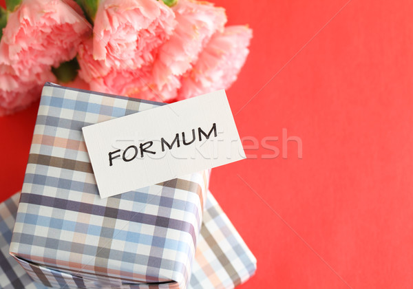 Mothers day with carnation Stock photo © leungchopan