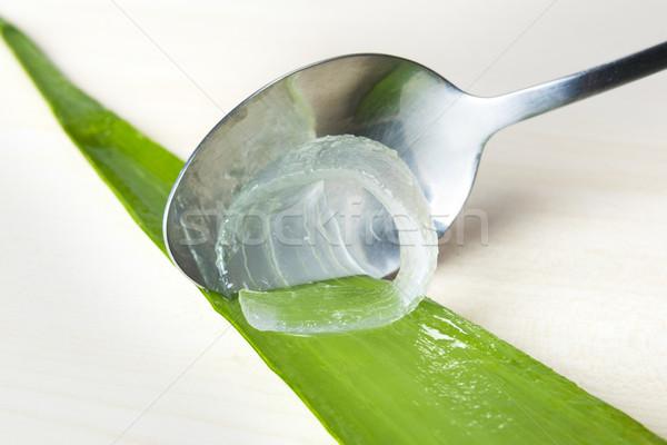 Aloés suco fresco folhas comida verde Foto stock © leventegyori
