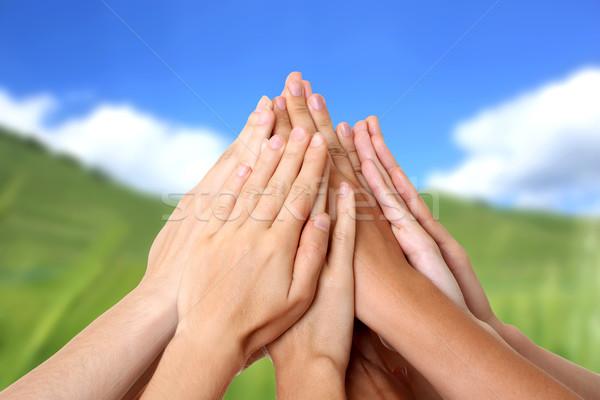 Kéz siker csapatmunka természet pálma kézfogás Stock fotó © leventegyori