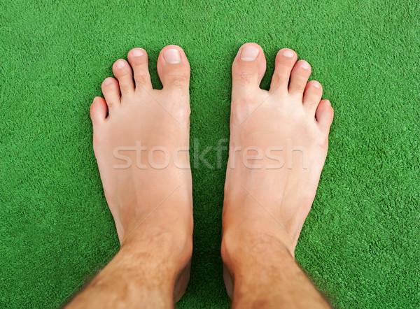 ногу зеленая трава женщину трава здоровья ног Сток-фото © leventegyori