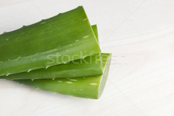 Aloe frischen Blätter Essen Blatt Stock foto © leventegyori