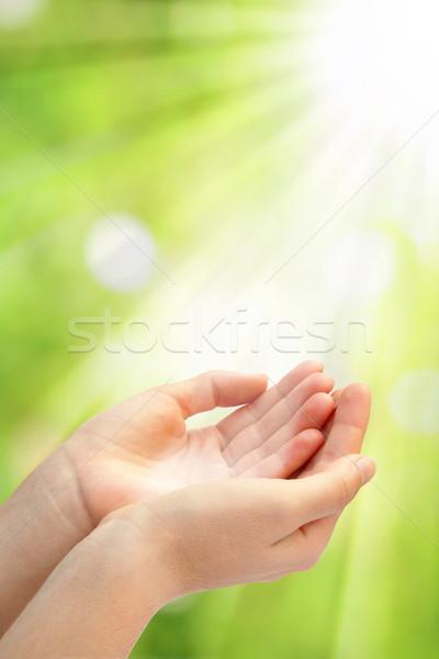 Nyitva üres kezek felirat férfiak zöld Stock fotó © leventegyori