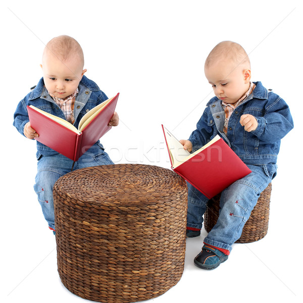 Baby boy twins Stock photo © leventegyori