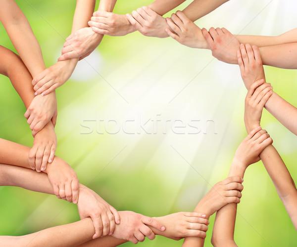 Halka eller takım çalışması doğa el toplantı Stok fotoğraf © leventegyori