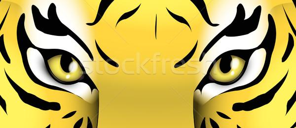 目 虎 顔 実例 野生動物 ほ乳類 ストックフォト © Li-Bro