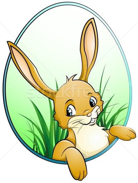 ウサギ 見える 春 卵 バニー 卵 ストックフォト © Li-Bro