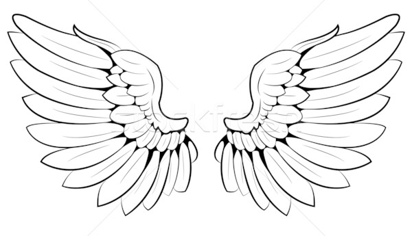 Wings Stock photo © Li-Bro