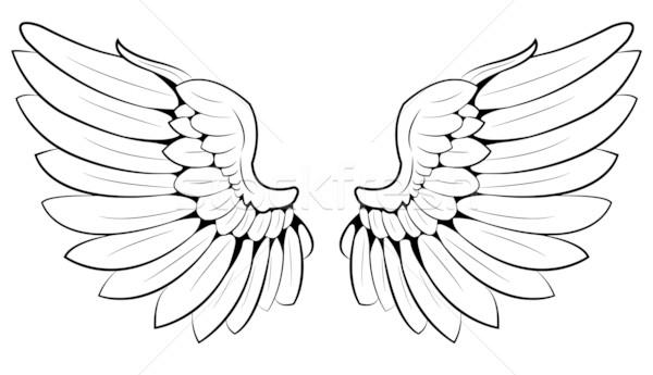 flügel · paar · abstrakten · engel · vogel · tier  vektor