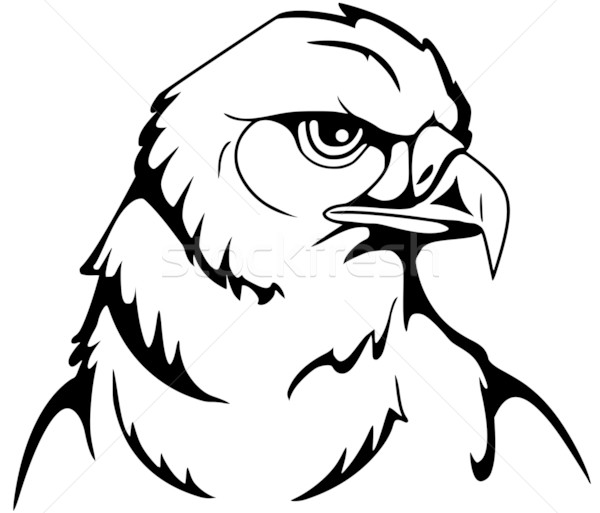 eagle Stock photo © Li-Bro