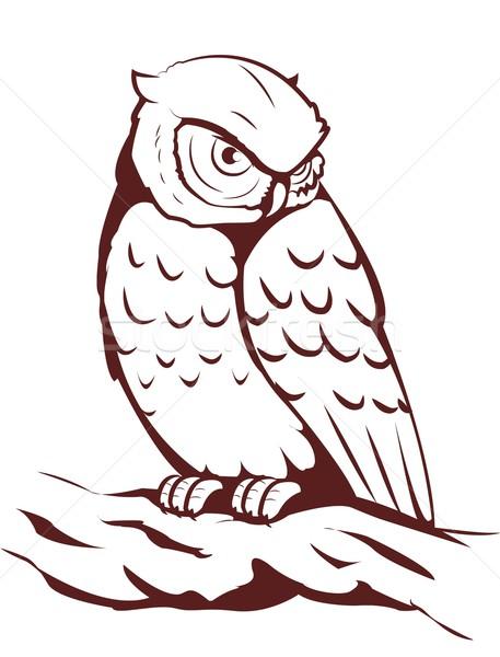 フクロウ 自然 動物 翼 支店 翼 ストックフォト © Li-Bro