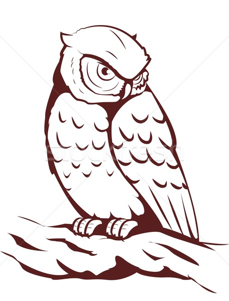 owl Stock photo © Li-Bro