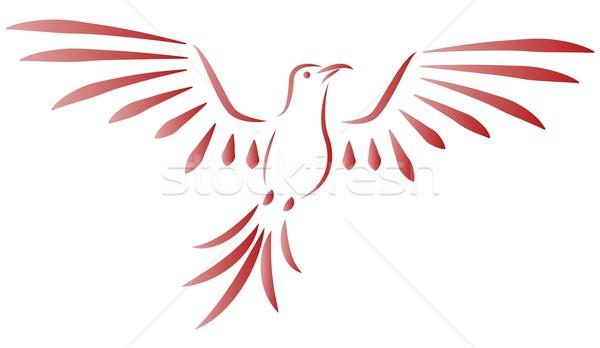 鳥 羽毛 鳩 フライ 動物 空気 ストックフォト © Li-Bro
