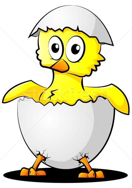 卵 鳥 鶏 面白い シェル ひよこ ストックフォト © Li-Bro