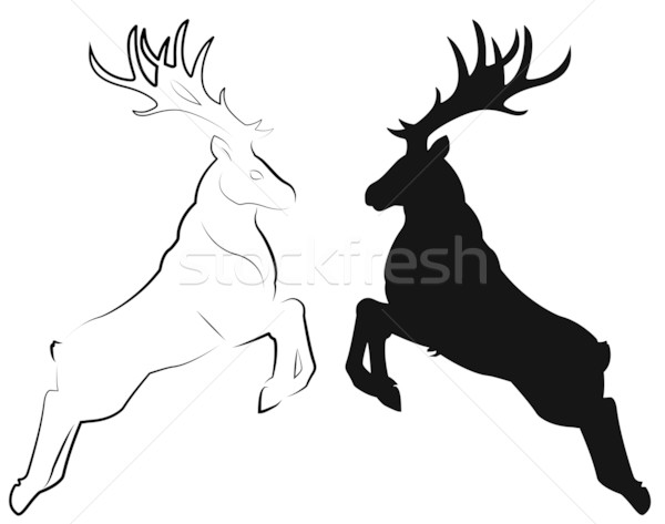 deer Stock photo © Li-Bro