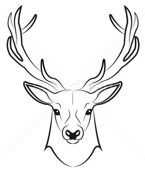 stag Stock photo © Li-Bro