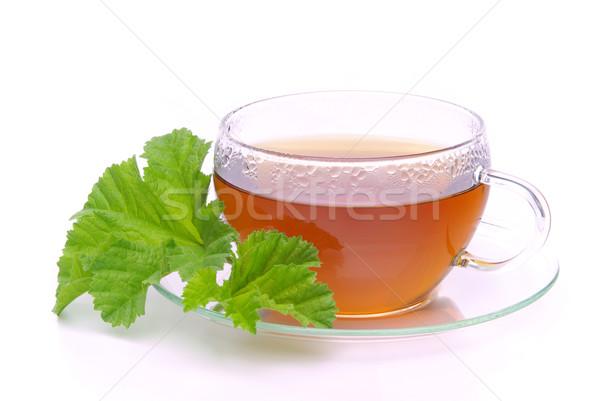 tea malva 02 Stock photo © LianeM
