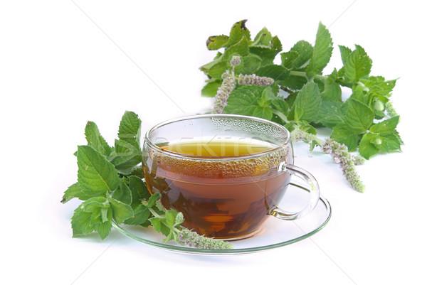 tea Mentha citrata 02 Stock photo © LianeM