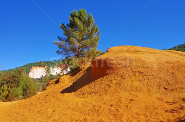 コロラド州 自然 風景 オレンジ 旅行 岩 ストックフォト © LianeM
