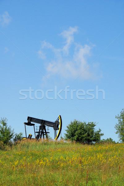 oil pump 04 Stock photo © LianeM