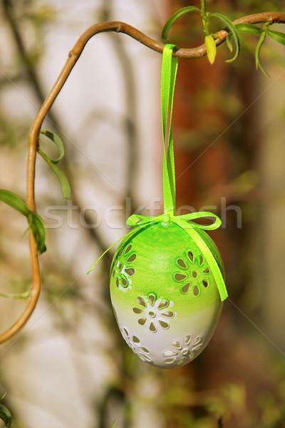 Krzew Wielkanoc czasu ogród jaj zielone Zdjęcia stock © LianeM