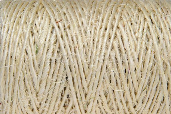 Cordon texture balle ligne fil fort Photo stock © LianeM