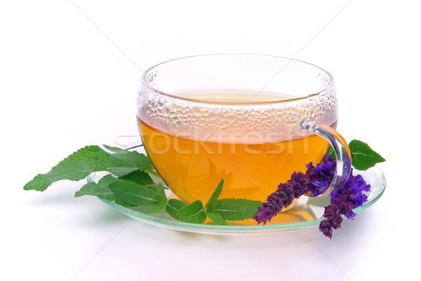 Thé sauge verre fond boire malade Photo stock © LianeM