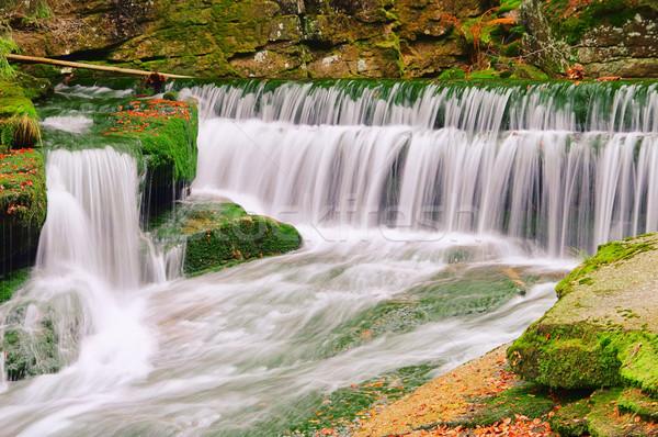 waterfall 05 Stock photo © LianeM