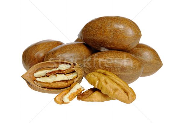 pecan nut 05 Stock photo © LianeM