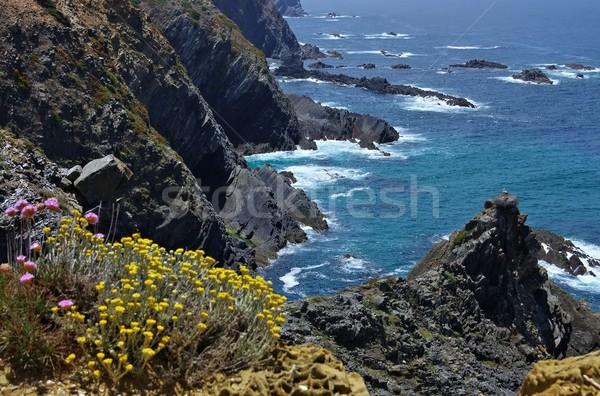 Cabo Sardao coast 01 Stock photo © LianeM