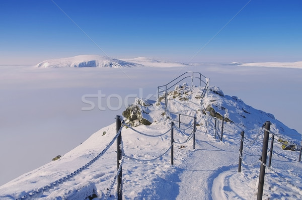 view from mountain Sniezka in winter Stock photo © LianeM