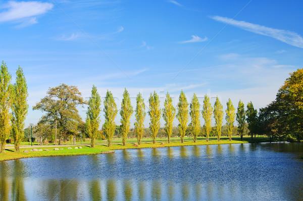 English Grounds of Woerlitz lake 08 Stock photo © LianeM