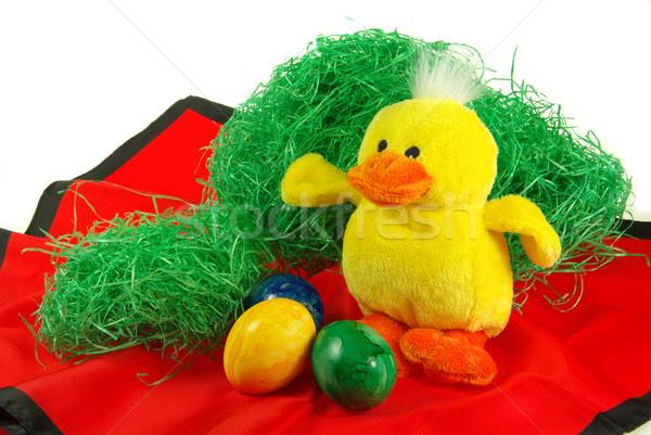 Paskalya yumurtası civciv Paskalya çim yumurta hediye Stok fotoğraf © LianeM